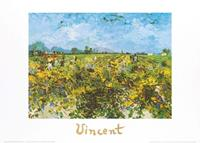 PGM Vincent Van Gogh - The Green Vineyard Kunstdruk 70x50cm