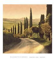 PGM Elisabeth Carmel - Country Lane, Tuscany Kunstdruk 45x50cm