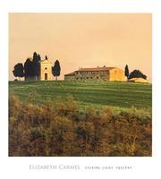 PGM Elisabeth Carmel - Evening Light, Tuscany Kunstdruk 45x50cm