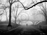 PGM Henri Silberman - Gothic Bridge, Central Park NYC Kunstdruk 80x60cm