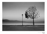 PGM Christian Coigny - Lutry Lac Lemon Kunstdruk 80x60cm