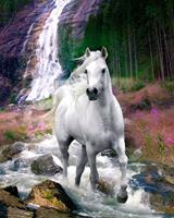 GBeye Bob Langrish Waterfall Poster 40x50cm