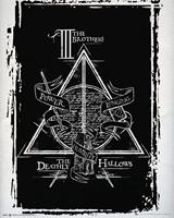 GBeye Harry Potter Deathly Hallows Graphic Poster 40x50cm