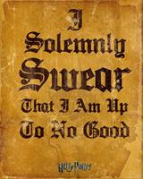 GBeye Harry Potter I Solemnly Swear Poster 40x50cm