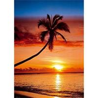 GBeye Sunset and Palm Tree Poster 61x91,5cm