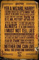 GBeye Harry Potter Quotes Poster 61x91,5cm