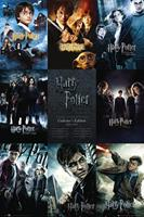 GBeye Harry Potter Collection Poster 61x91,5cm