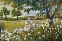 PGM Patrick - Summer Bloom Kunstdruk 91x61cm