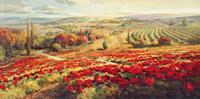 PGM Roberto Lombardi - Red Poppy Panorama Kunstdruk 120x60cm