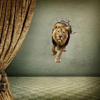 3D leeuw verwijderbare muurstickers, afmetingen: 90 x 58 x 0,3 cm