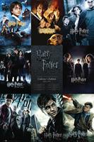 GBeye Harry Potter Collection Deco Panel 60x90cm