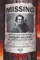 Pyramid Stranger Things Missing Barb Poster 61x91,5cm