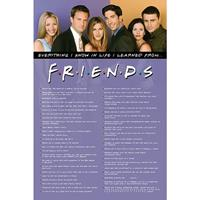 Pyramid Friends Everything I Know Poster 61x91,5cm