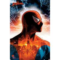 Pyramid Spider Man Protector of the City Poster 61x91,5cm