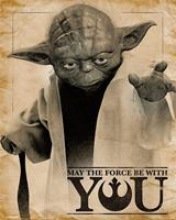 Pyramid Star Wars Classic Yoda May the Force be With You Poster 40x50cm