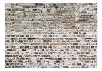 Old Walls Vlies Fotobehang 300x210cm