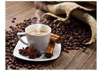 Star Anise Coffee Vlies Fotobehang 350x270cm
