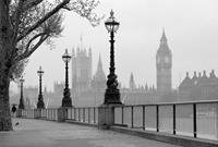 London Fog Vlies Fotobehang 384x260cm 8-banen