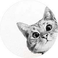 Wizard+Genius Sneaky Cat Vlies Fotobehang 140x140cm rond
