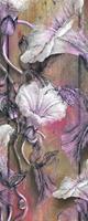 Komar Bloomin Vlies Fotobehang 100x250cm 1-baan
