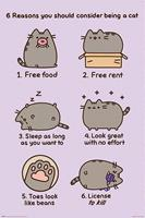 Pusheen Reasons to be a Cat Poster 61x91,5cm