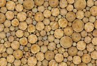 Logs Vlies Fotobehang 384x260cm 8-banen