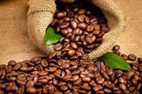 Coffee Beans Vlies Fotobehang 375x250cm 5-banen