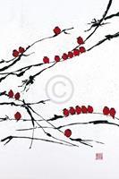 Jenny Tsang - Bamboo Chorus Kunstdruk 41x61cm