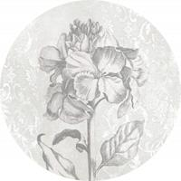 Komar Barock Beauty Vlies Fotobehang 125x125cm rond