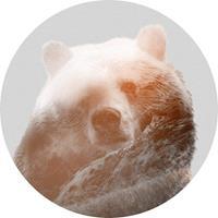 Komar Bearava Vlies Fotobehang 125x125cm rond