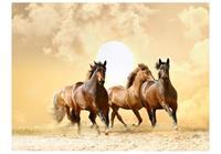 Artgeist Running Paarden Vlies Fotobehang 250x193cm