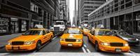 Yelow Taxi Vlies Fotobehang 375x150cm 5-banen