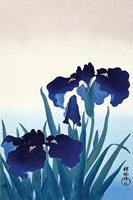 Ohara Koson Iris Flowers Poster 61x91,5cm