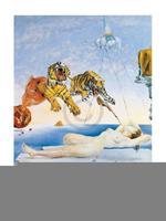 Salvador Dali - Une seconde avant l'eveil Kunstdruk 60x80cm
